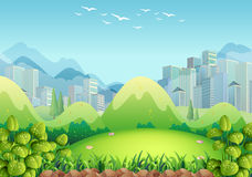 Nature scene with buildings in the background Royalty Free Stock Images