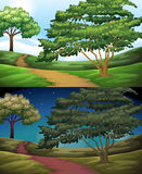 Nature scene of the countryside at day and night Royalty Free Stock Photo