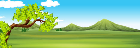 Nature scene with green field. Illustration Royalty Free Stock Photos