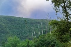 Nature scene of green hill against blue sky. Portuguese island of Madeira stock photography