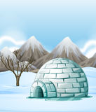 Nature scene with igloo on the ground Royalty Free Stock Image