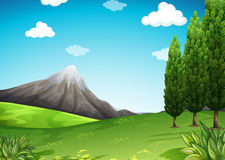 Nature scene with mountain and field Stock Images