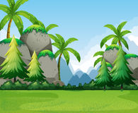 Nature scene with mountains and tree Royalty Free Stock Photos