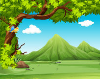 Nature scene with moutains in background. Illustration Royalty Free Stock Photo