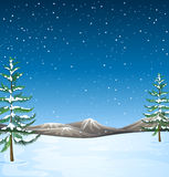 Nature scene with snow falling at night Stock Photography