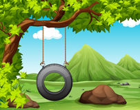 Nature scene with swing in the park Royalty Free Stock Image
