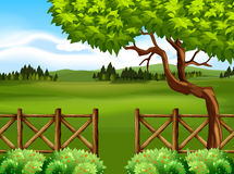 Nature scene with tree and field. Illustration Royalty Free Stock Photos