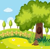 Nature scene with trees in the field. Illustration Stock Photos