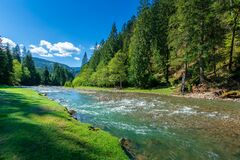Nature Scene With Mountain River Royalty Free Stock Images