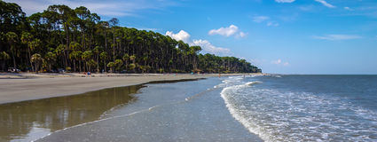 Nature scenes around hunting island south carolina Royalty Free Stock Photos