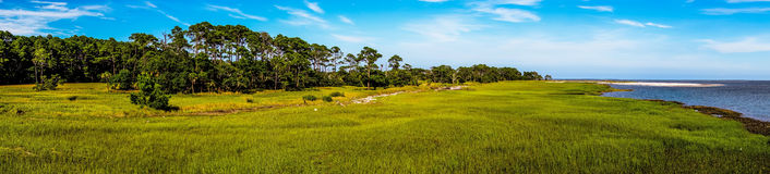 Nature scenes around hunting island south carolina stock photo