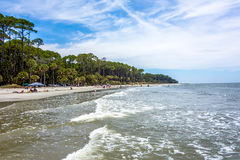 Nature scenes around hunting island south carolina Stock Image