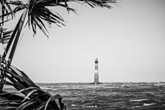 Nature scenes near morris island lighthouse beach stock photography