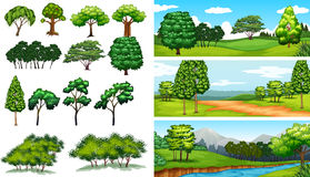 Nature scenes with trees and fields Stock Image