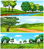 Nature scenes with trees and river Royalty Free Stock Photography
