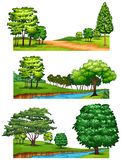Nature scenes with trees and rivers Royalty Free Stock Photo