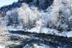 Nature Scenes winter landscape river. Stock Photos