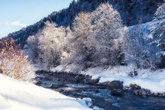 Nature Scenes winter landscape river. Royalty Free Stock Photos