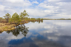Nature schenry of lake, trees and cloudy sky Royalty Free Stock Photos