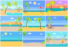 Nature Sea Beaches Collection Vector Illustration. Nature of sea beaches collection, place with palms, starfish near hammock-chair, umbrella and relax, ideal vector illustration