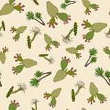 Nature seamless pattern with cactuses and yucca. Hand drawn vector illustration royalty free illustration