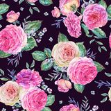 Nature seamless pattern with roses Stock Photo