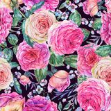 Nature seamless pattern with roses Royalty Free Stock Photos