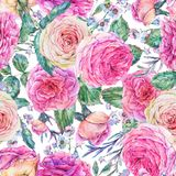 Nature seamless pattern with roses Stock Images