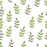 Nature seamless pattern watercolor hand drawn leaf. S. Nature color Royalty Free Stock Photography