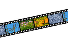 Nature seasons in film frames Royalty Free Stock Image