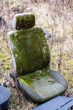 Nature seat Stock Photo
