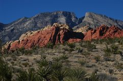 Red Desert Sharp Contrast. Nature, sharp color contrast, rocks, desert formations, red rock Royalty Free Stock Image