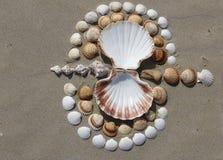 Nature shells bird and land art inspiration stock photo