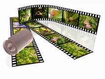 Nature shots. Film roll with color pictures on white background Royalty Free Stock Photos