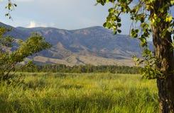 Nature siberi.Gorny landscape. Royalty Free Stock Image