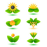 Nature signs. Set of vector templates with nature icons Stock Images