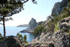 The nature of Simeiz.Crimea Royalty Free Stock Images