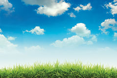 Nature sky clouds and green grass Royalty Free Stock Photo