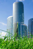 Nature and skyscraper Stock Images