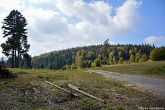 Nature IN Slovakia. Through the autumne in Slovakia Stock Images
