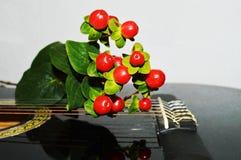 Nature and sound, symbols Stock Photo