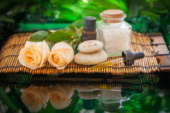 Nature spa Stock Photography