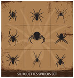 Spiders silhouettes vector collection Stock Photography