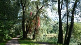 Nature lake beautiful dream Stock Photo