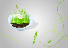 Nature spring background Royalty Free Stock Photography