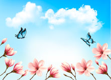 Nature spring background with beautiful magnolia branches Royalty Free Stock Photography