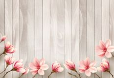 Nature spring background with beautiful magnolia branches Royalty Free Stock Photo