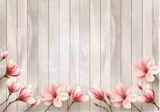 Nature spring background with beautiful magnolia branches Stock Image