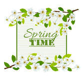 Nature spring background with cherry blossoms. Royalty Free Stock Photos