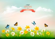 Nature spring background with grass and flowers and butterflies. Vector royalty free illustration